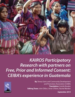 cover - CEIBA Case Study