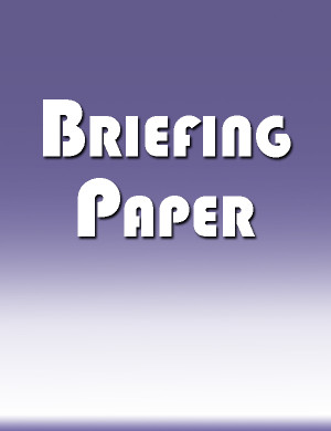 store icon briefing paper