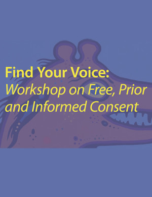 cover-Find-Your-Voice-FPIC-Workshop