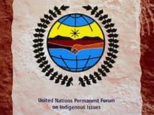 UNPFII logo