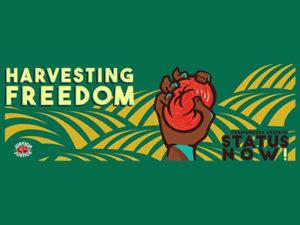 harvesting-freedom-1