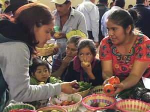 Local Nicaraguan farmers discussing crop diversity in a USC Canada vegetable seed exchange workshop at an Agrobiodiversity Fair in Guatemala.