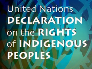 United Nations declaration on the rights of indigenous peoples icon