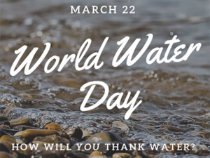 Will you thank water on World Water Day?