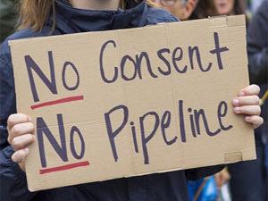 no consent no pipeline