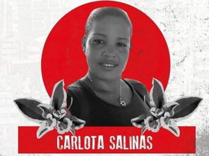 Carlota Isabel Salinas Pérez, a woman human rights defender, was murdered outside her home on the evening of March 24 in San Pablo