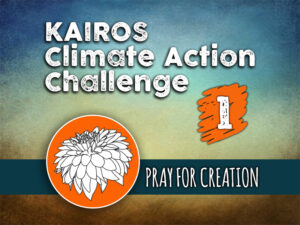 Day 1 - Climate Action Challenge