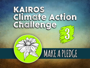 Day 3 - Climate Action Challenge