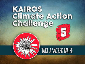 Day 5 - Climate Action Challenge
