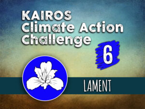 Day 6 - Climate Action Challenge