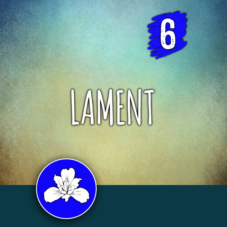 ACTION 6: Lament
