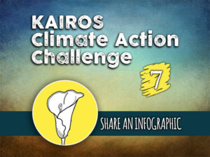 Day 7 - Climate Action Challenge