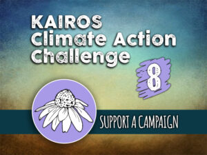 Day 8 - Climate Action Challenge
