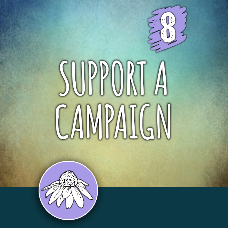 ACTION 8: Support a campaign
