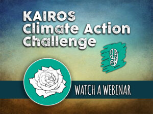 Day 9 - Climate Action Challenge