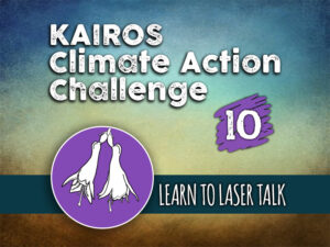 Day 10 - Climate Action Challenge
