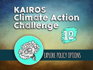 Day 12 - Climate Action Challenge
