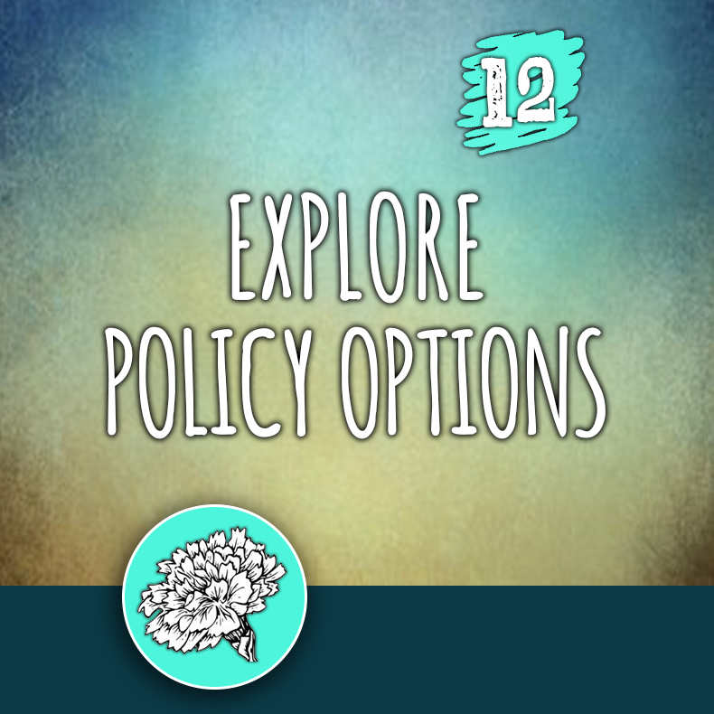 ACTION 12: Explore policy options
