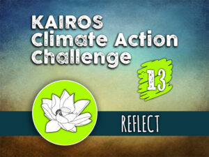 Day 13 - Climate Action Challenge