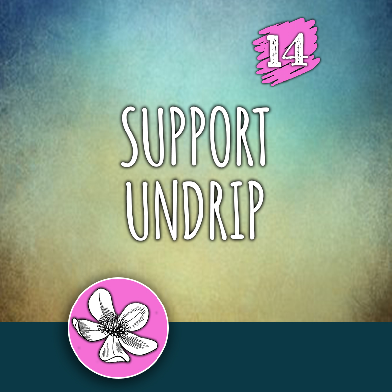 ACTION 14: Support UNDRIP