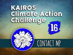 Day 16 - Climate Action Challenge