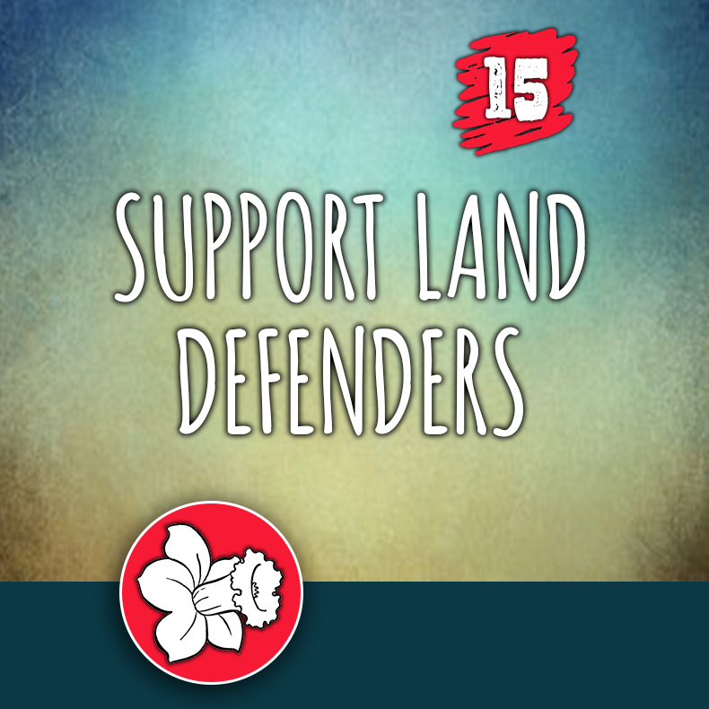ACTION 15: Support land defenders