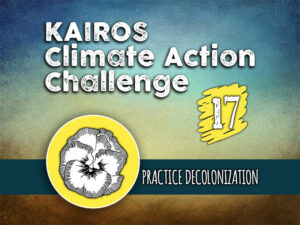 Day 17 - Climate Action Challenge