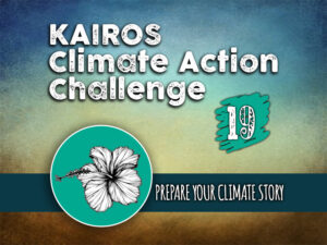 Day 19 - Climate Action Challenge