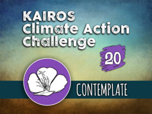 Day 20 - Climate Action Challenge