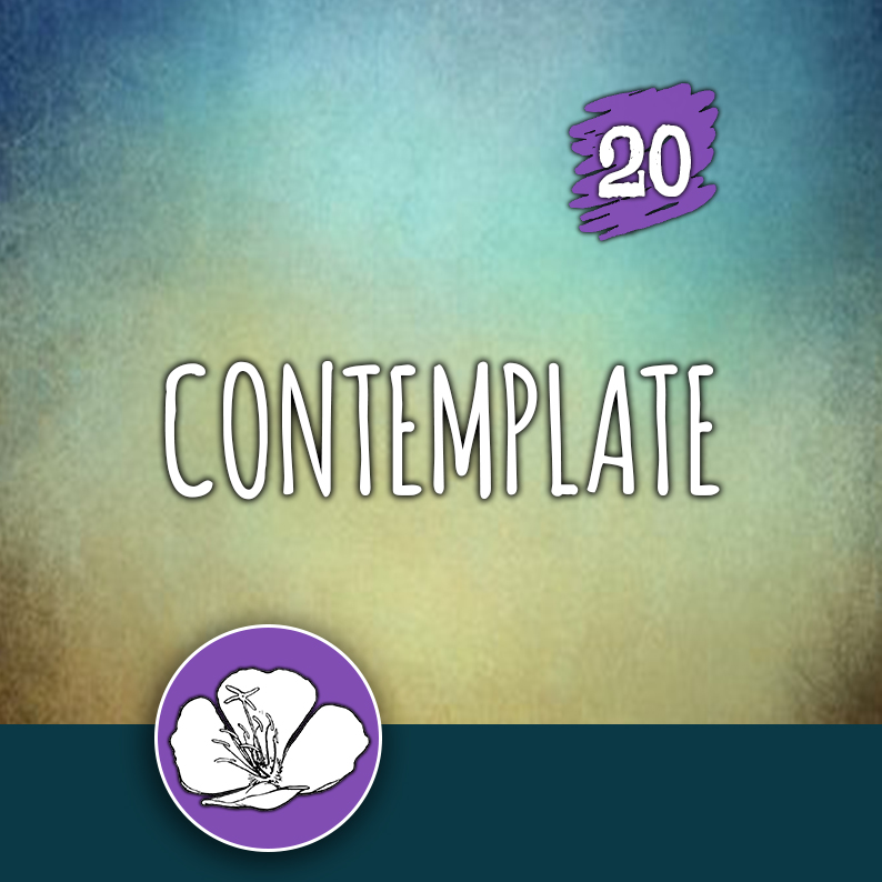 ACTION 20: Contemplate
