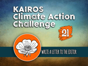 Day 21 - Climate Action Challenge