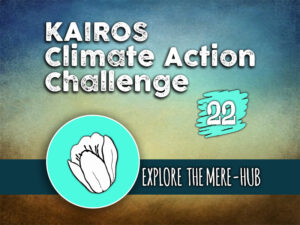 Day 22 - Climate Action Challenge