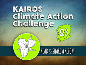 Day 23 - Climate Action Challenge