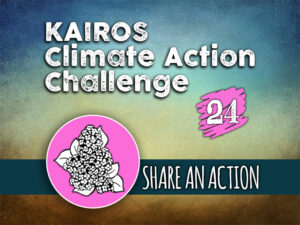 Day 24 - Climate Action Challenge