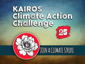 Day 25 - Climate Action Challenge