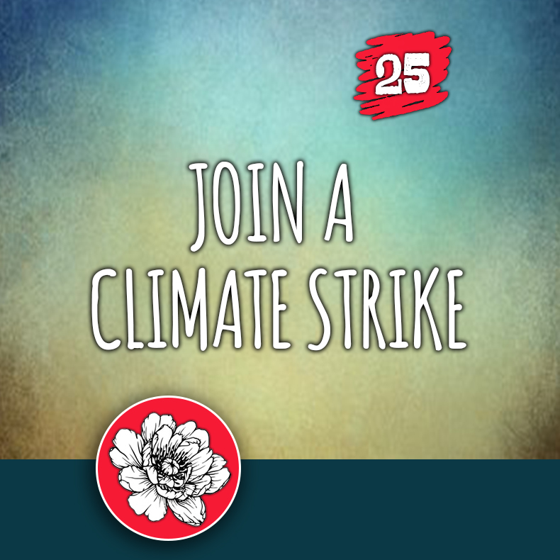 ACTION 25: Join a climate strike