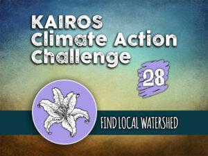 Day 28 - Climate Action Challenge