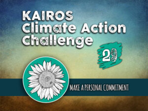 Day 29 - Climate Action Challenge