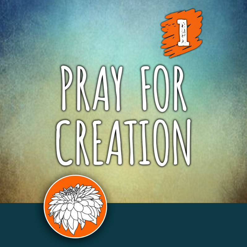 ACTION 1: Pray for Creation