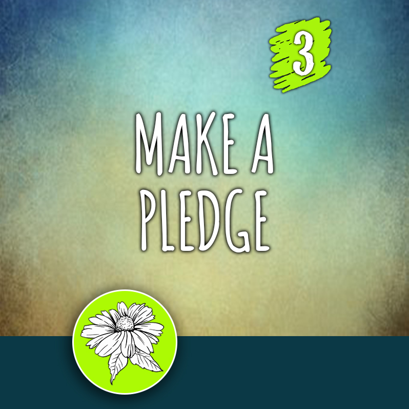 ACTION 3: Make a pledge