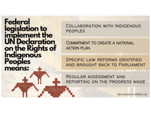 Federal legislation to implement the UN Declaration on the Rights of Indigenous Peoples