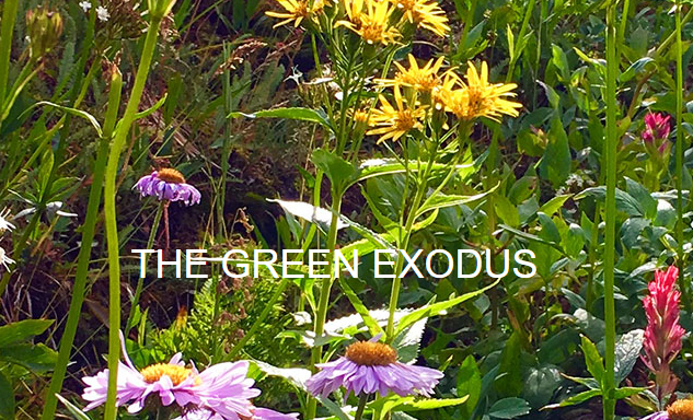 The Green Exodus