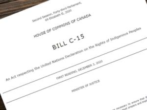 bill c-15