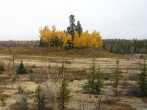 Northwestern Ontario landscape