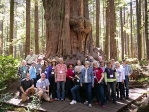 participants of Rolling Justice Bus in an old-growth forest