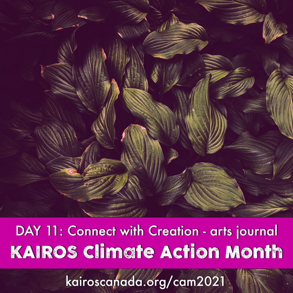 DAY 11 of Climate Action Month: connect with Creation with an arts journal
