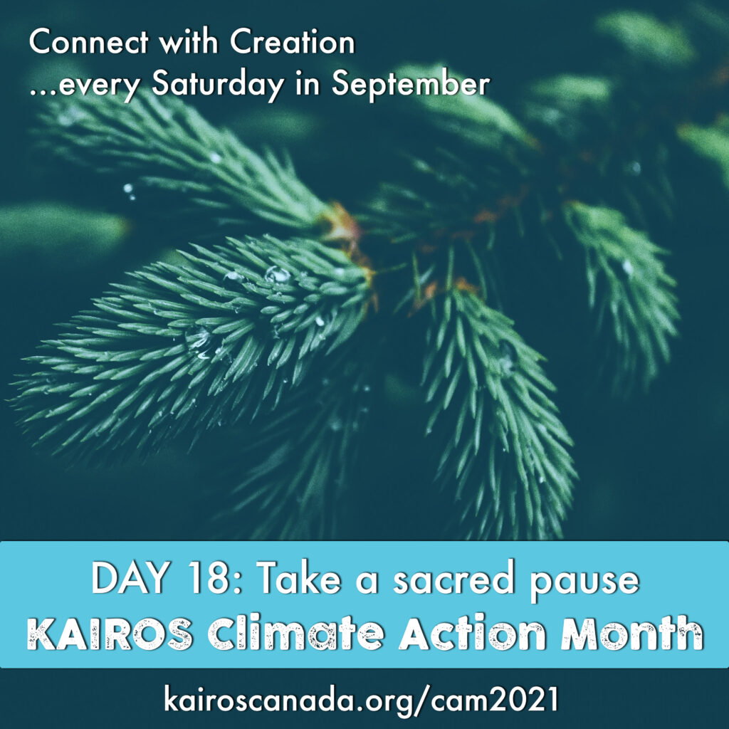 DAY 18 of Climate Action Month: take a sacred pause