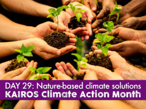 DAY 29 of climate action month, nature-based climate solutions