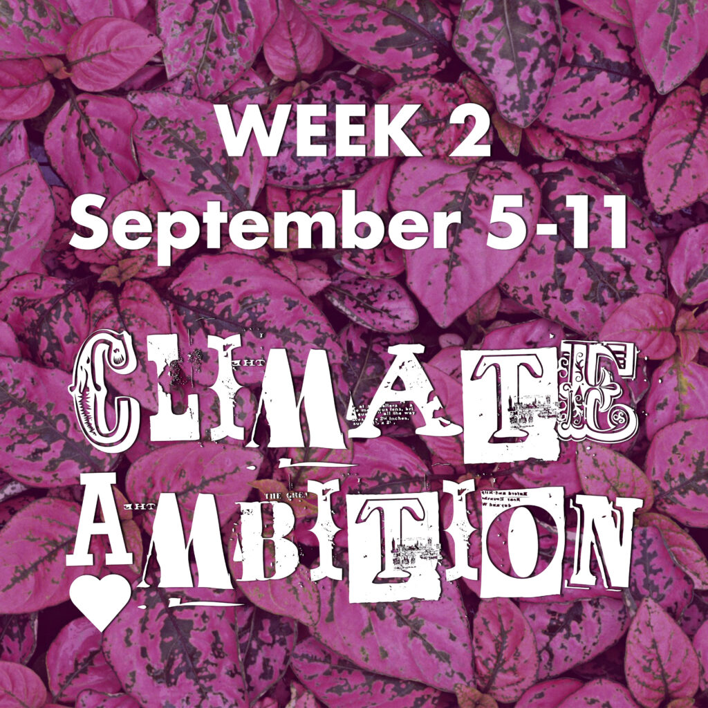 Week 2 - September 5-11, CLIMATE AMBITION